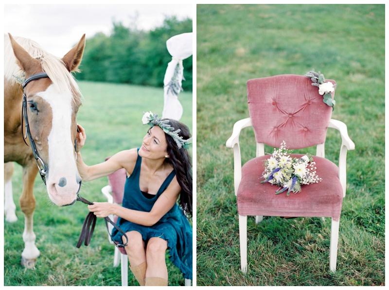 equine photography wiltshire