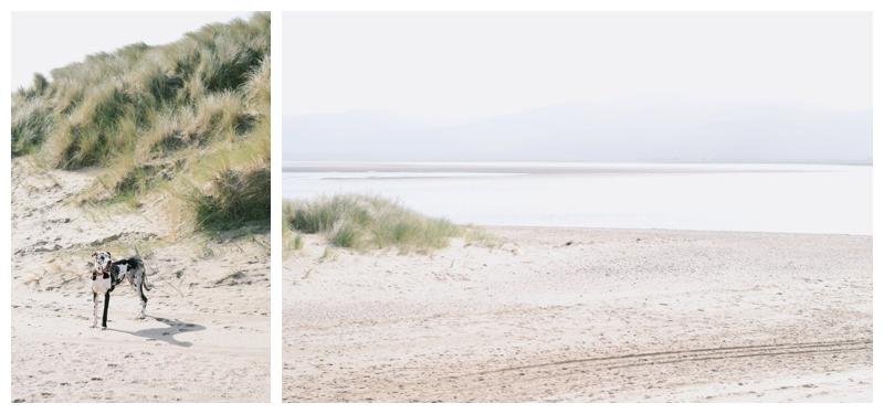 borth beach wales