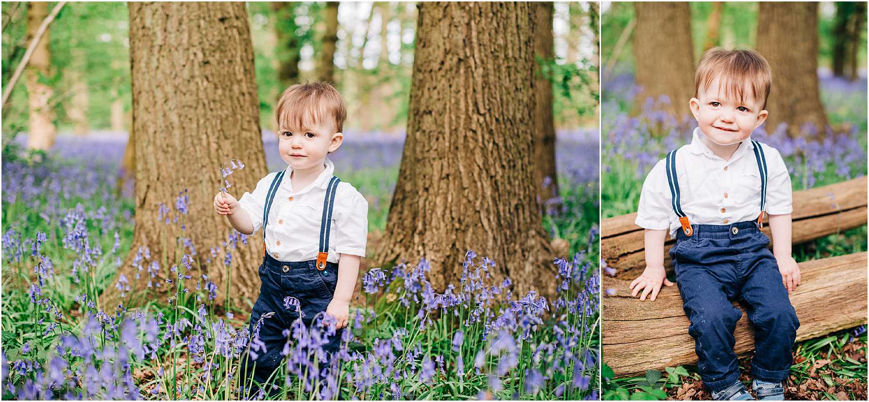 bluebell photography wiltshire