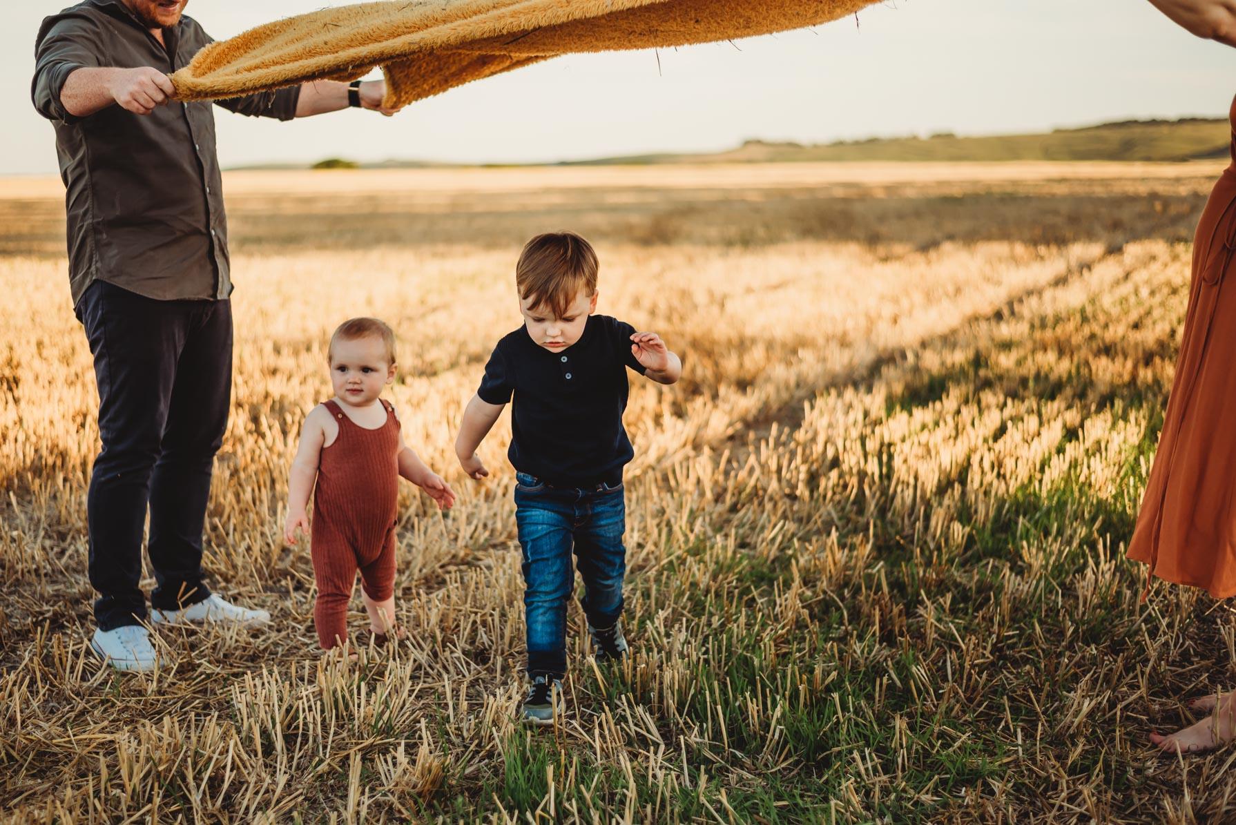 two children in a golden crop field running under a blanket held up by their parents